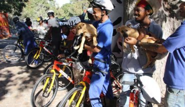 Funride helps homeless dogs